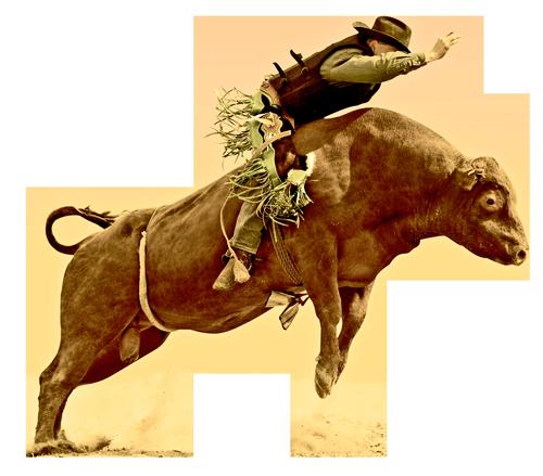 Bullrider-clipped-2